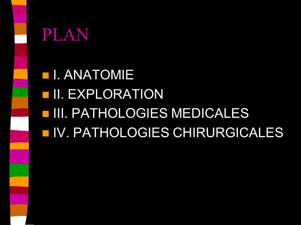 PLAN I. ANATOMIE II. EXPLORATION III. PATHOLOGIES MEDICALES