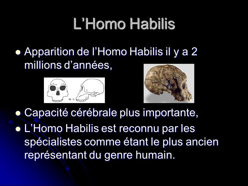 L'Homo Habilis Apparition de l'Homo Habilis il y a 2 millions d'années, Capacité cérébrale plus importante,
