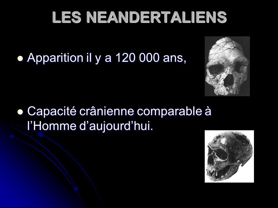 LES NEANDERTALIENS Apparition il y a 120 000 ans,