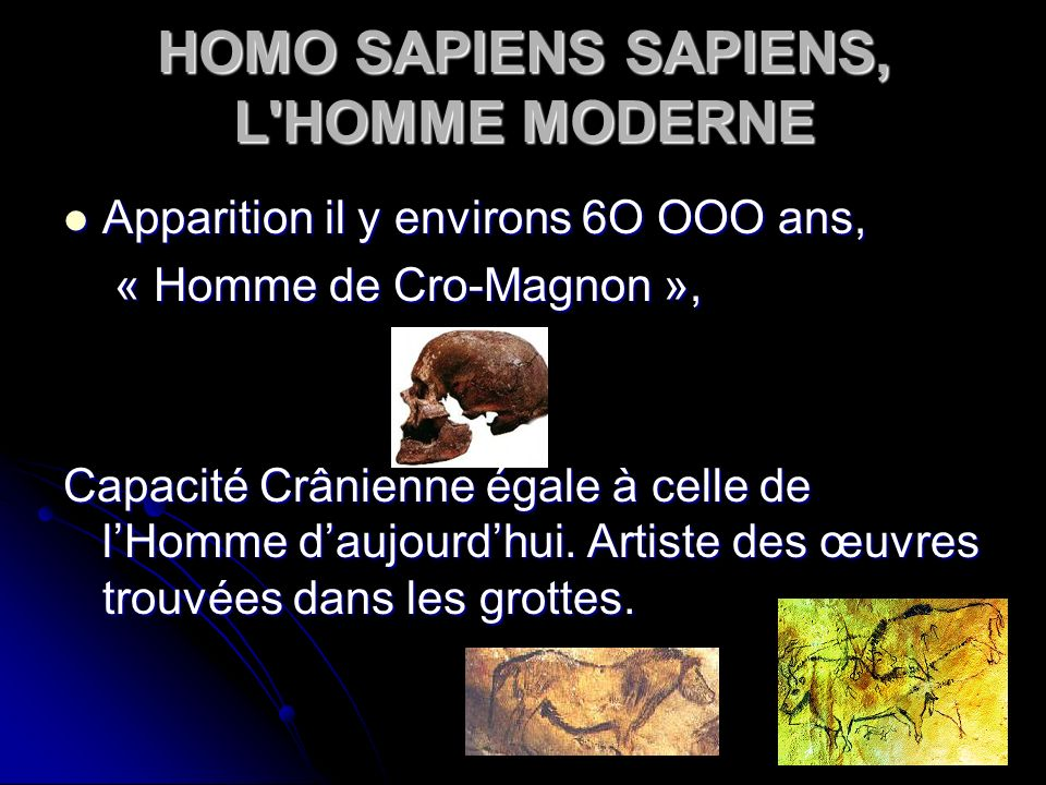 HOMO SAPIENS SAPIENS, L HOMME MODERNE