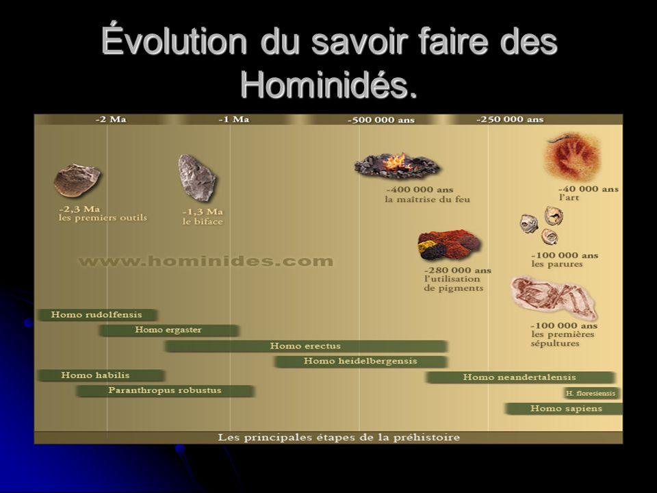 Évolution du savoir faire des Hominidés.