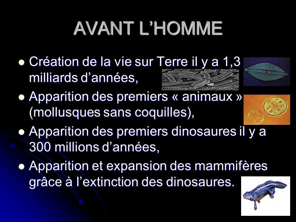 AVANT L'HOMME Création de la vie sur Terre il y a 1,3 milliards d'années, Apparition des premiers « animaux » (mollusques sans coquilles),