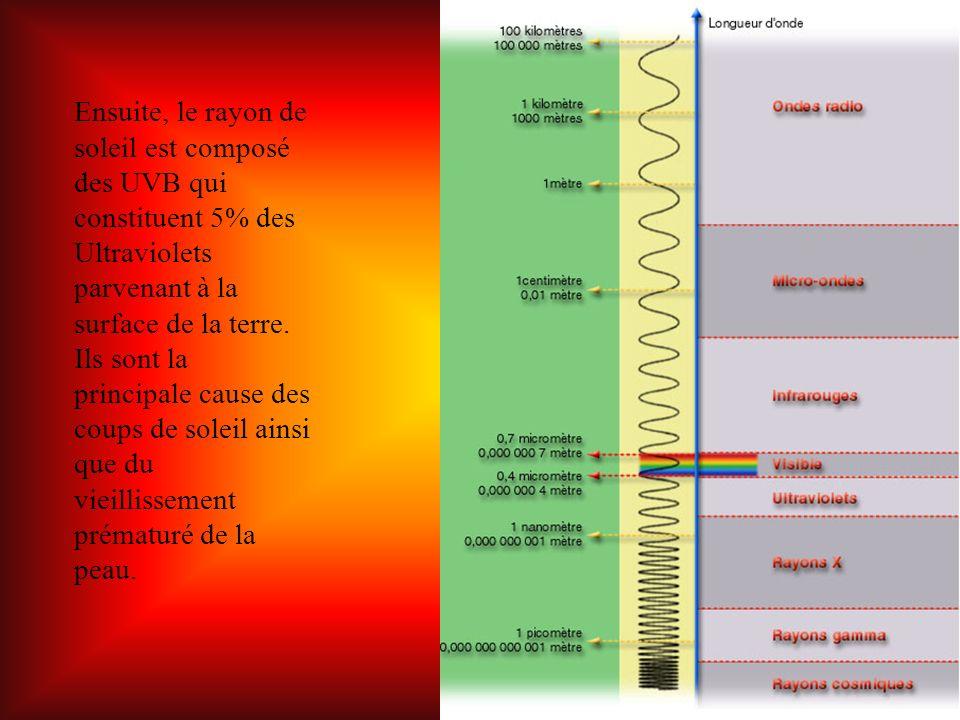 Ensuite, le rayon de soleil est composé des UVB qui constituent 5% des Ultraviolets parvenant à la surface de la terre.