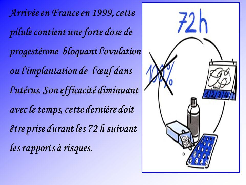Arrivée en France en 1999, cette
