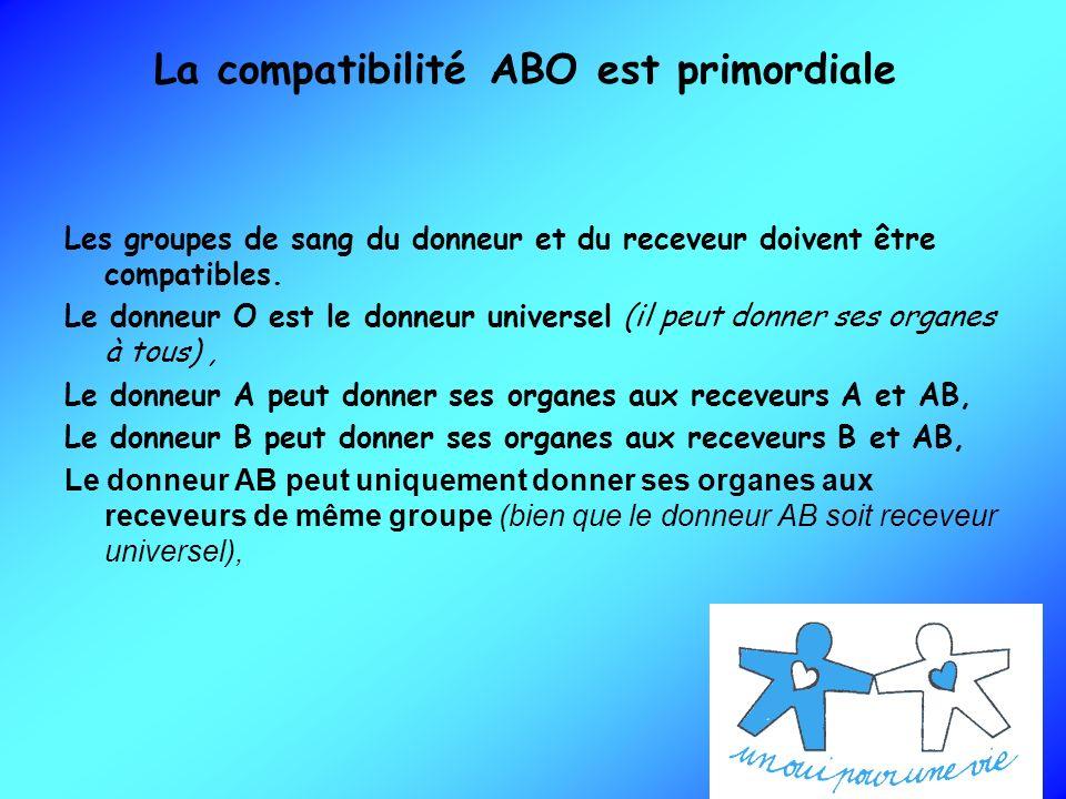 La compatibilité ABO est primordiale
