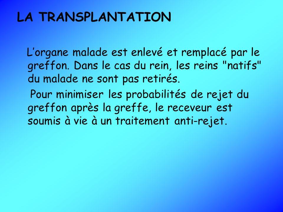 LA TRANSPLANTATION L'organe malade est enlevé et remplacé par le greffon. Dans le cas du rein, les reins natifs du malade ne sont pas retirés.