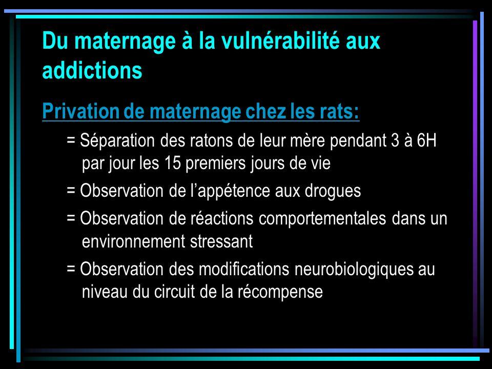 Du maternage à la vulnérabilité aux addictions