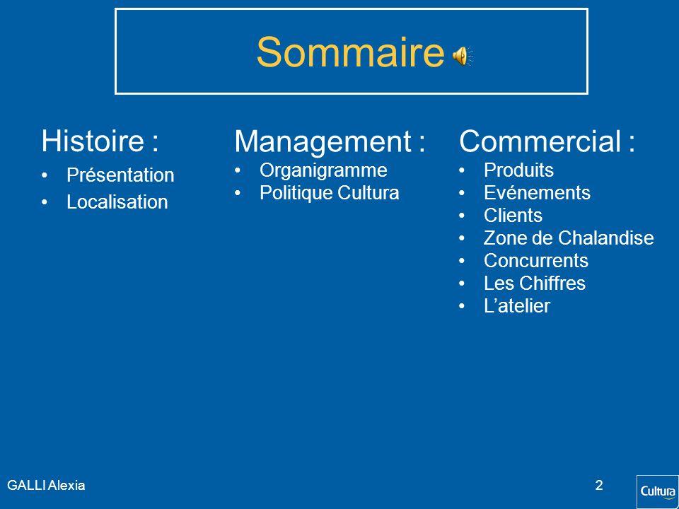 Sommaire Histoire : Management : Commercial : Présentation