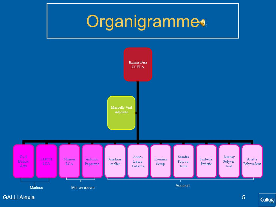 Organigramme GALLI Alexia