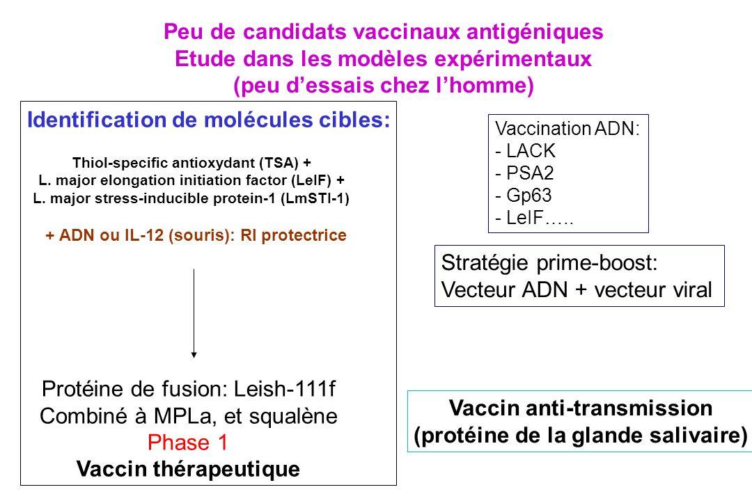 Peu de candidats vaccinaux antigéniques