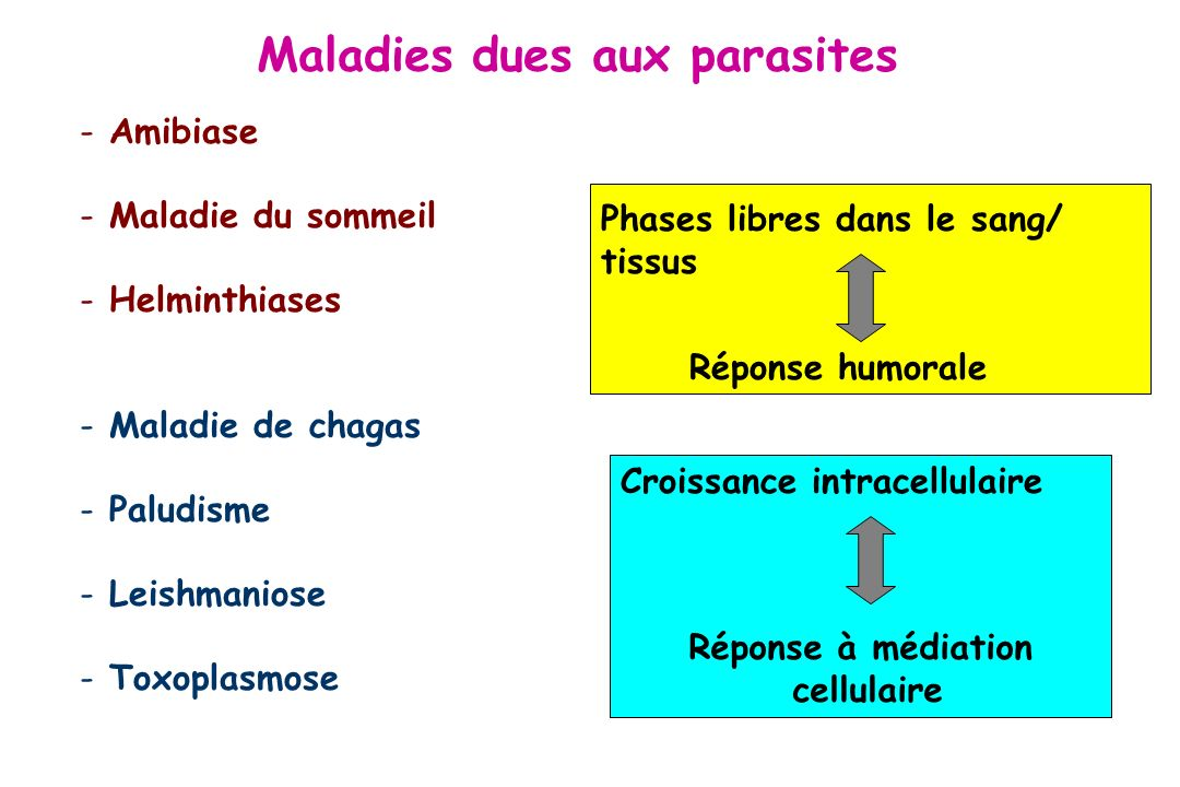Maladies dues aux parasites