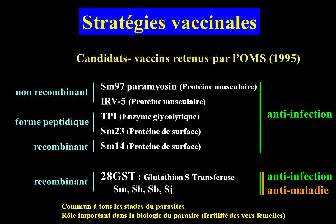 Stratégies vaccinales