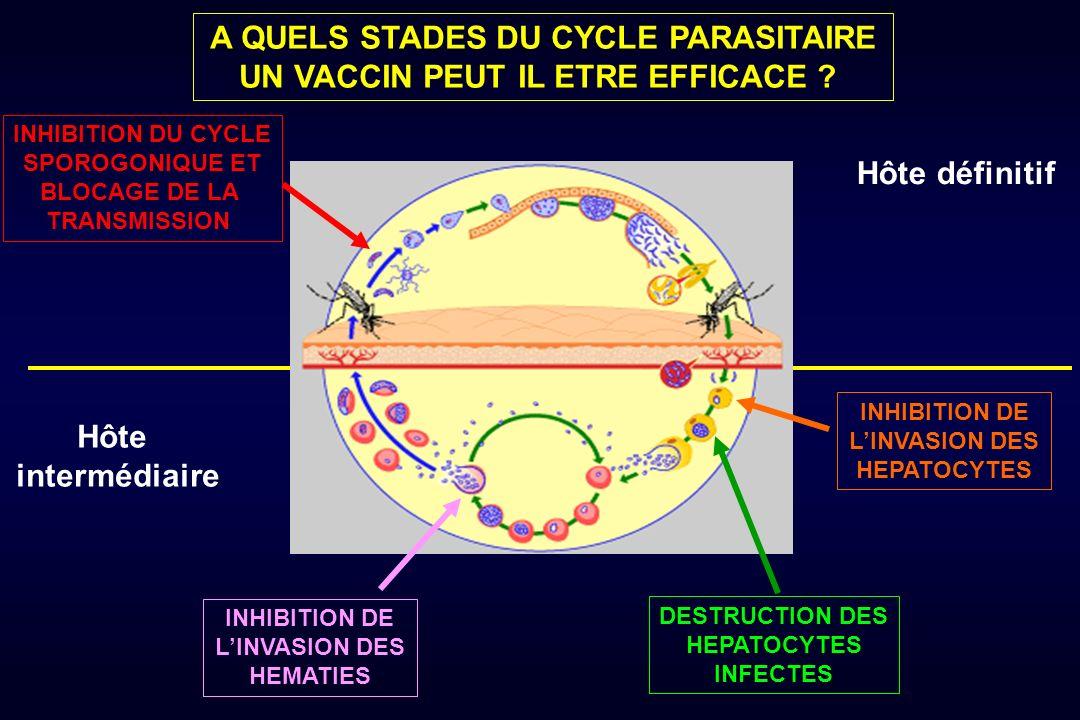 A QUELS STADES DU CYCLE PARASITAIRE UN VACCIN PEUT IL ETRE EFFICACE