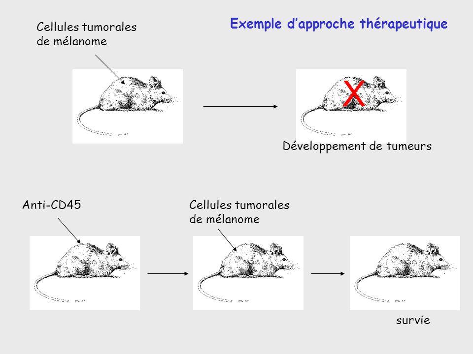 X Exemple d'approche thérapeutique Cellules tumorales de mélanome