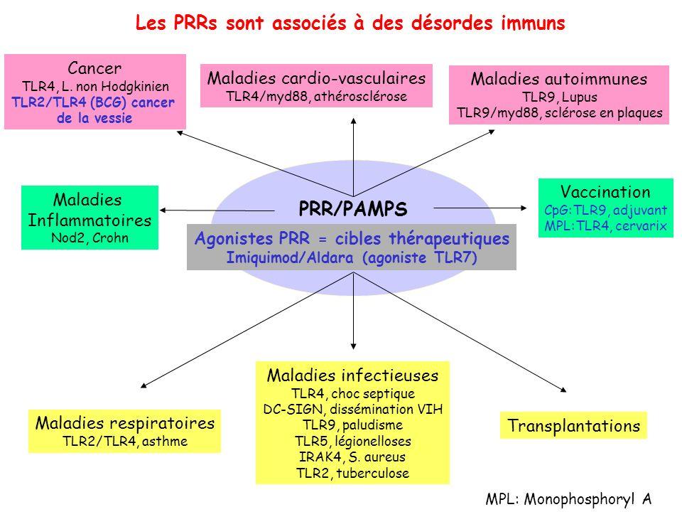 Les PRRs sont associés à des désordes immuns PRR/PAMPS