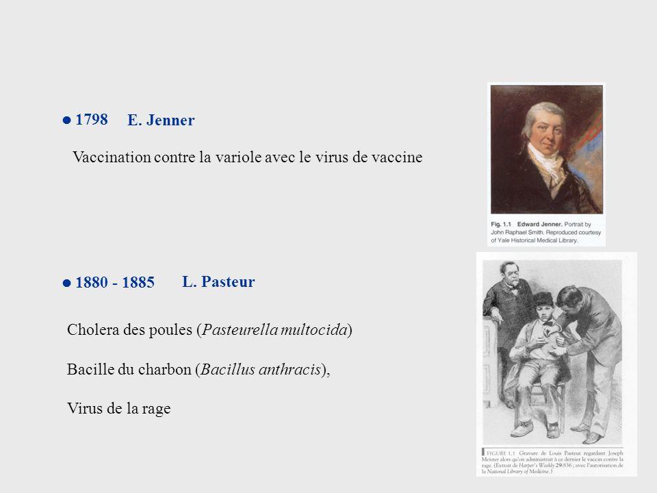Vaccination contre la variole avec le virus de vaccine