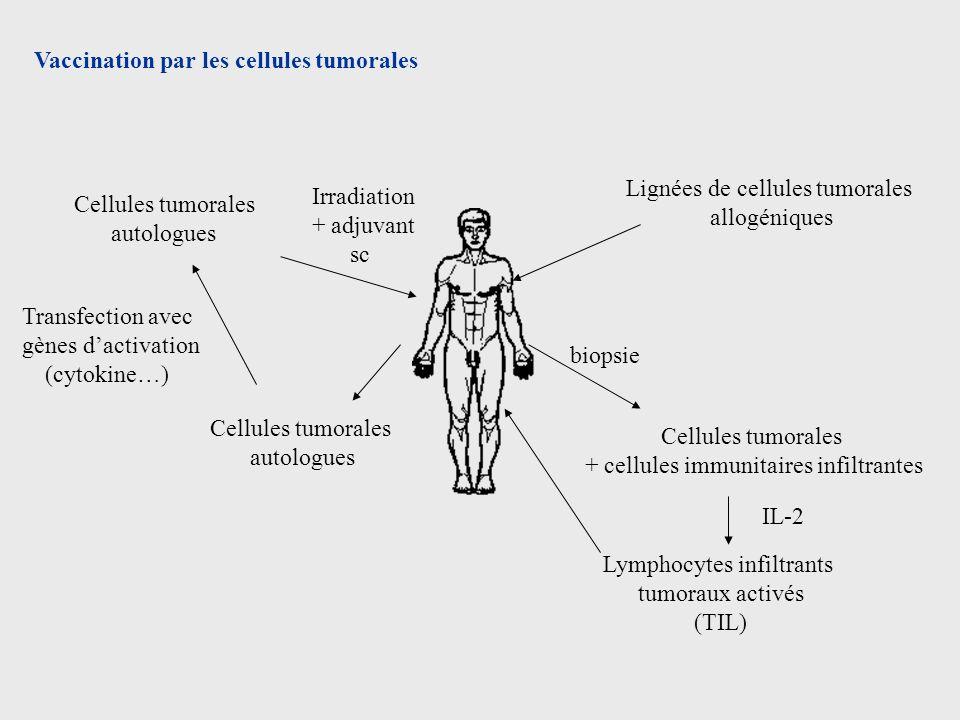 Vaccination par les cellules tumorales