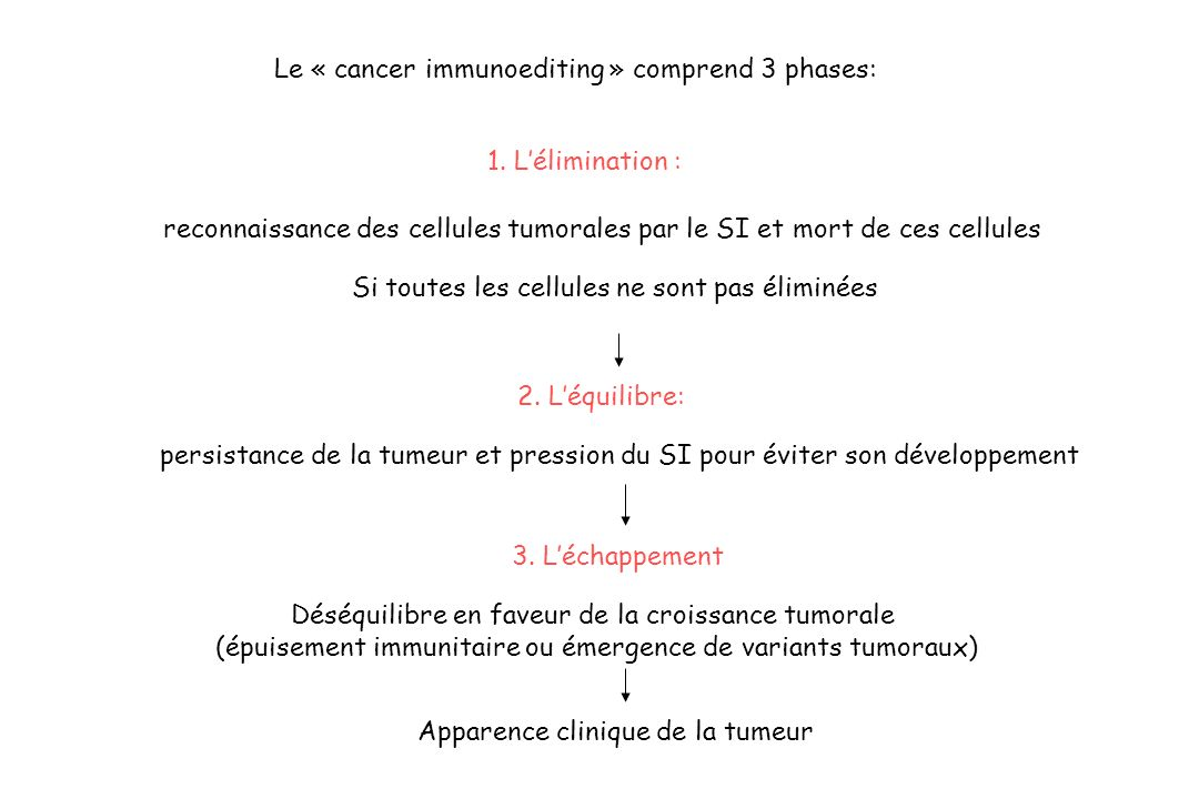 Le « cancer immunoediting » comprend 3 phases: