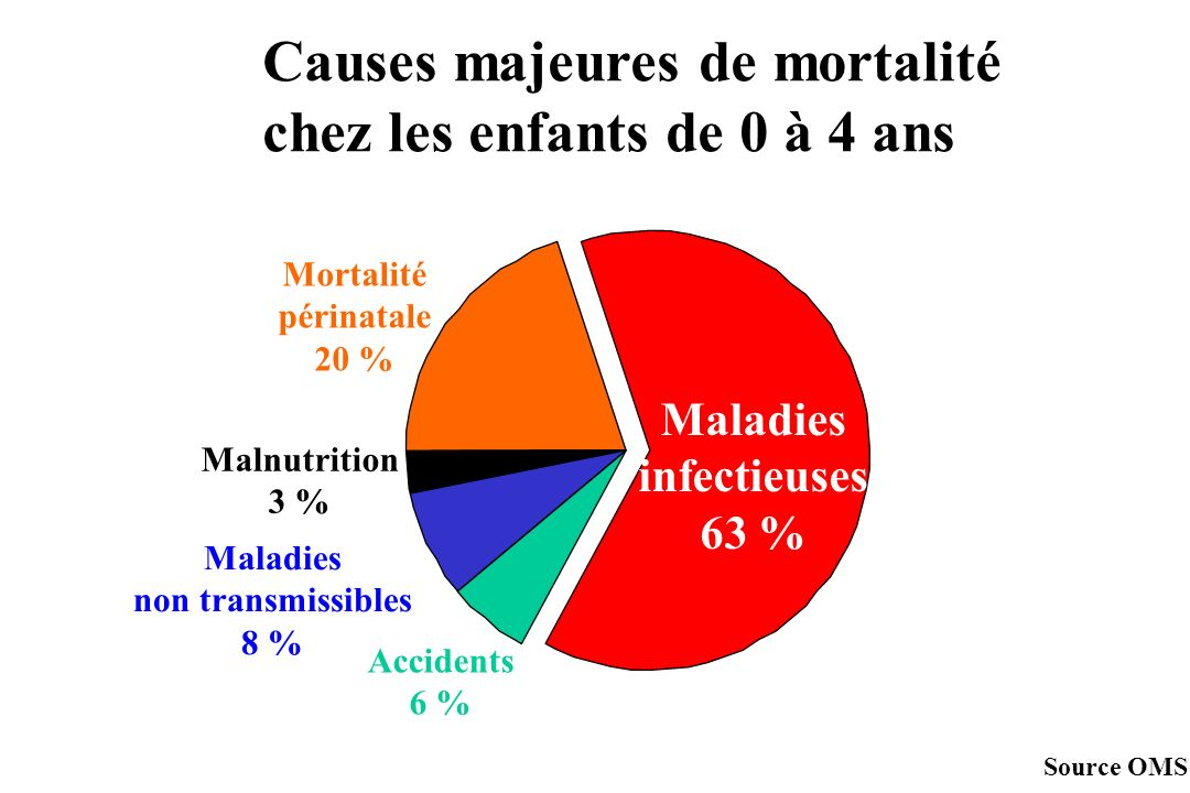 Causes majeures de mortalité chez les enfants de 0 à 4 ans