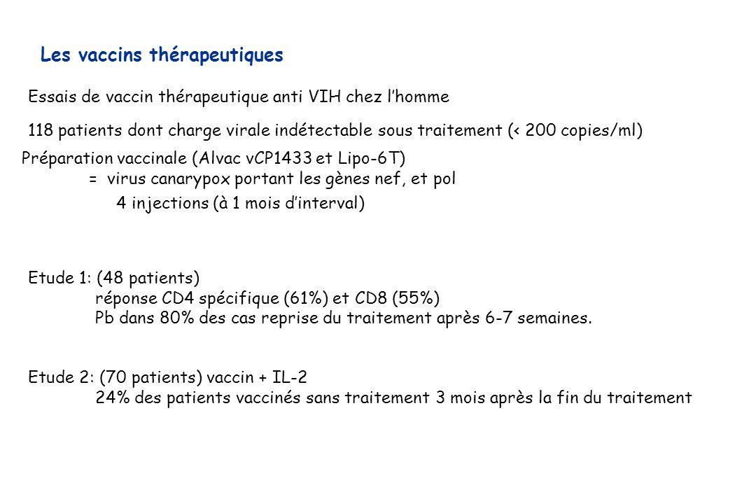 Les vaccins thérapeutiques