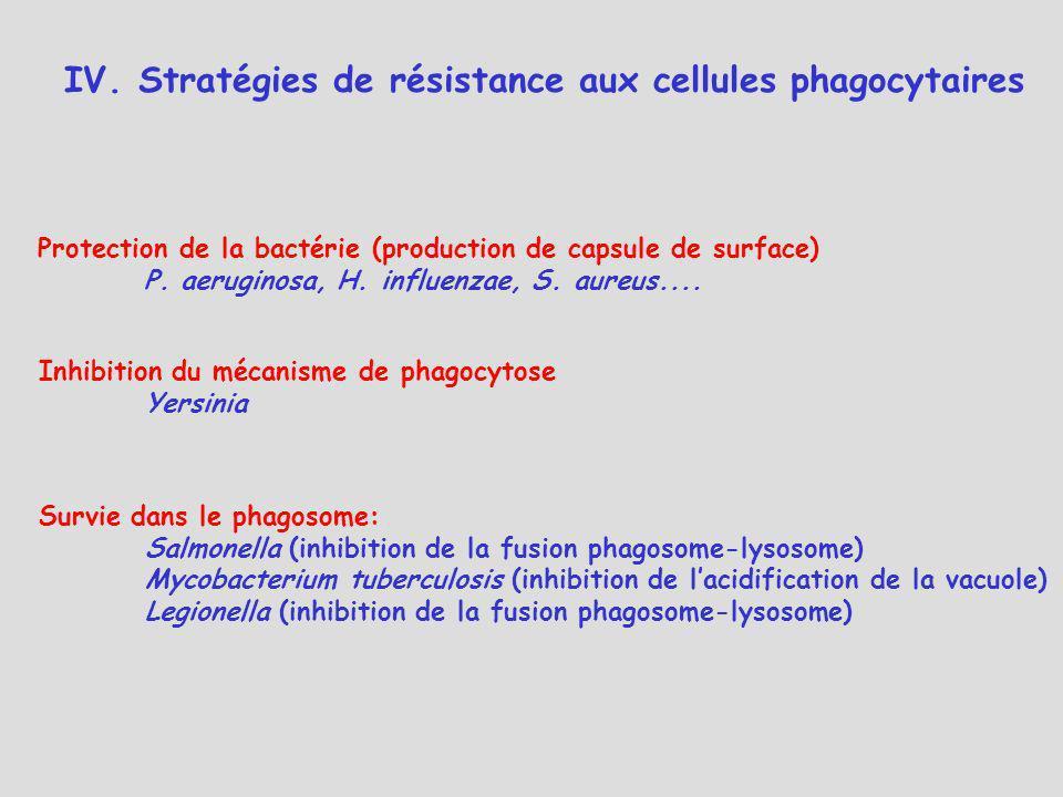 IV. Stratégies de résistance aux cellules phagocytaires