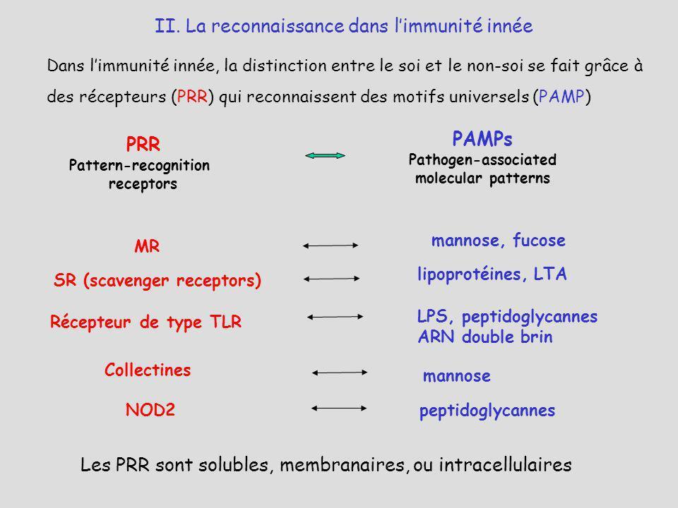 Les PRR sont solubles, membranaires, ou intracellulaires