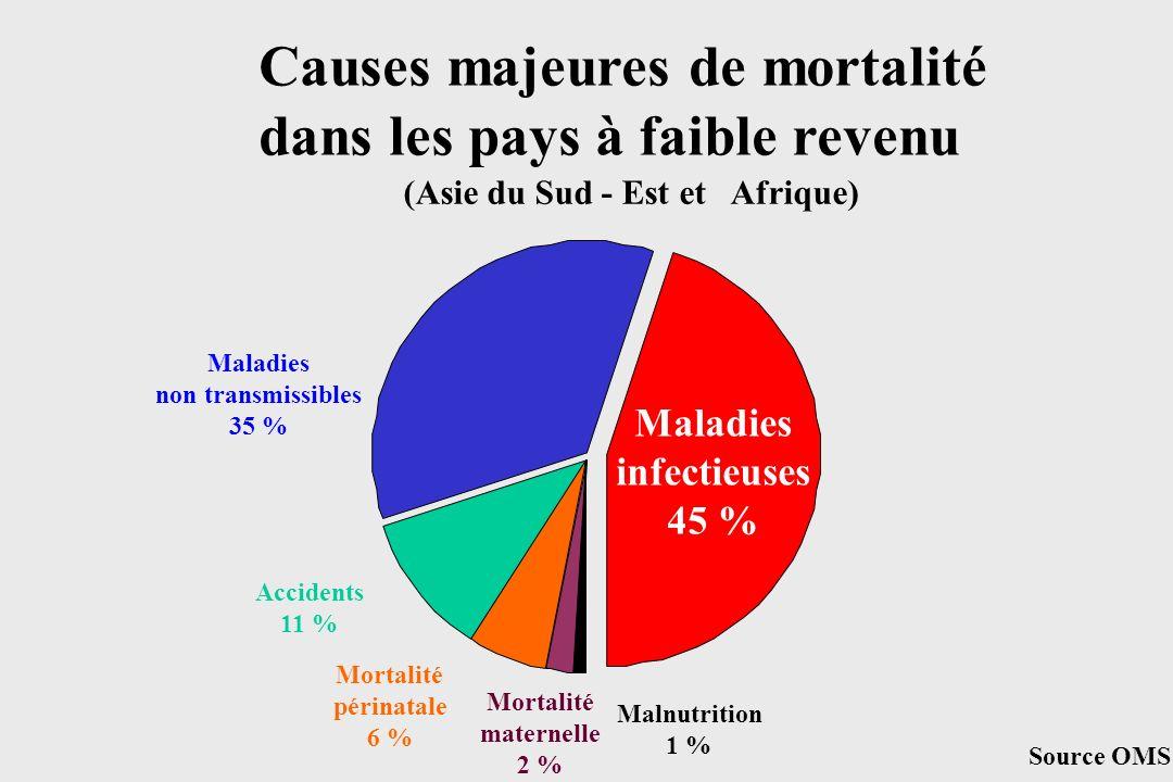 Causes majeures de mortalité dans les pays à faible revenu
