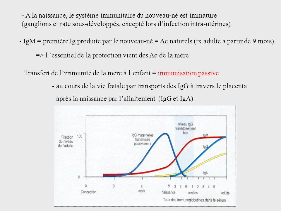 - A la naissance, le système immunitaire du nouveau-né est immature