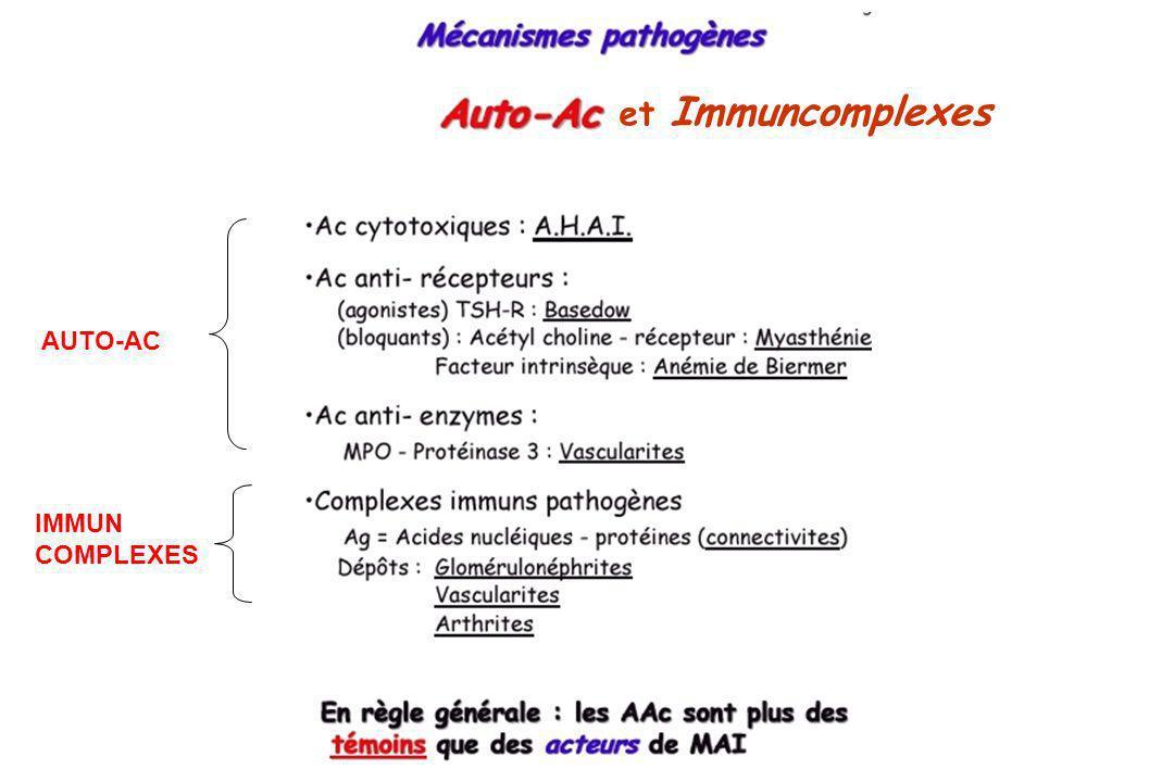 et Immuncomplexes AUTO-AC MAI5 IMMUN COMPLEXES