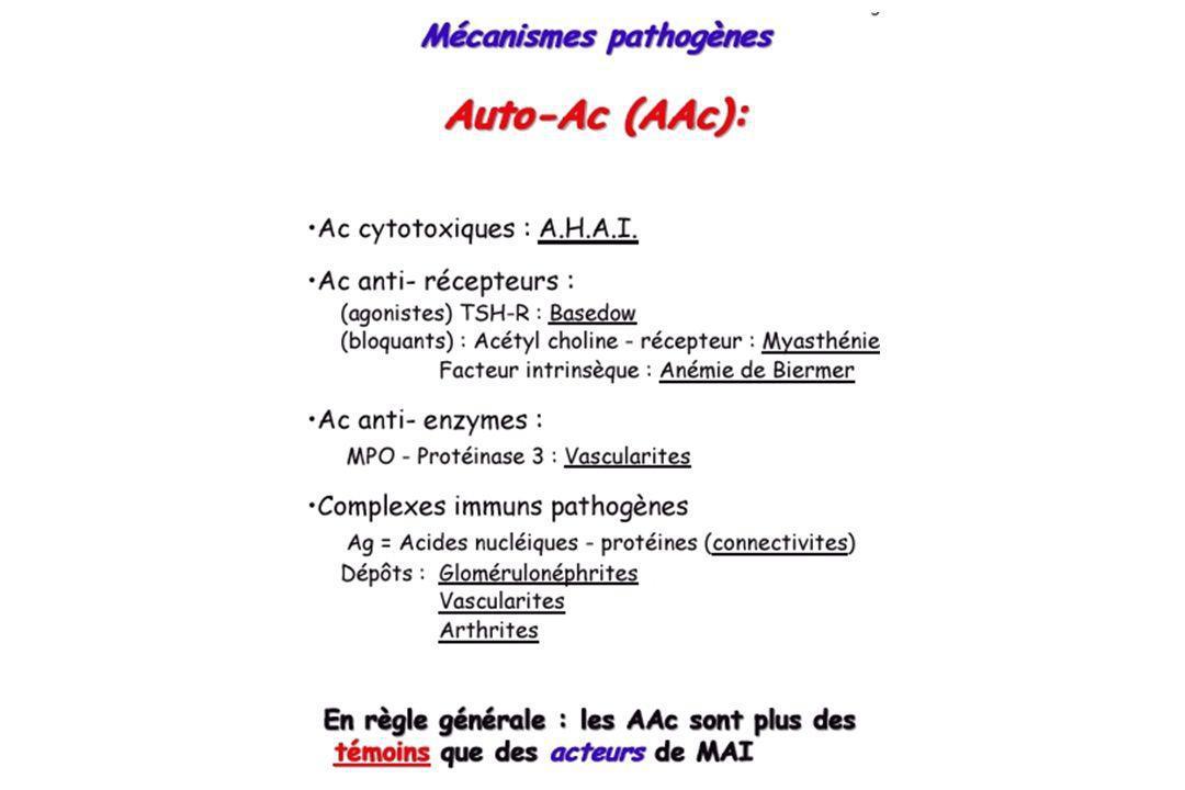 MAI5 Dépôt des IC dans vaisseaux=vascularites