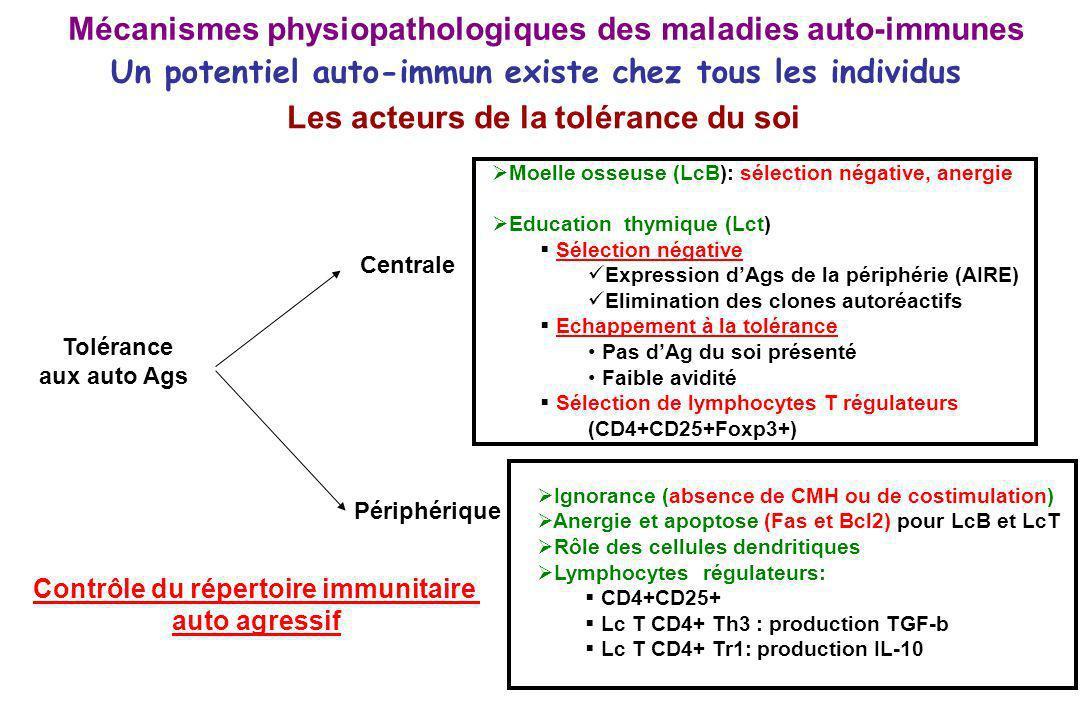 Contrôle du répertoire immunitaire