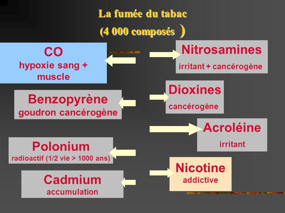 Nitrosamines CO Dioxines Benzopyrène Acroléine Polonium Nicotine