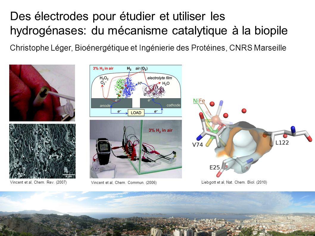 Des électrodes pour étudier et utiliser les hydrogénases: du mécanisme catalytique à la biopile
