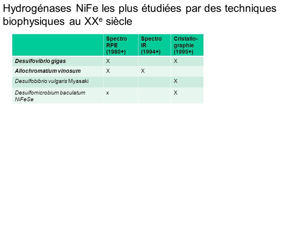 Hydrogénases NiFe les plus étudiées par des techniques