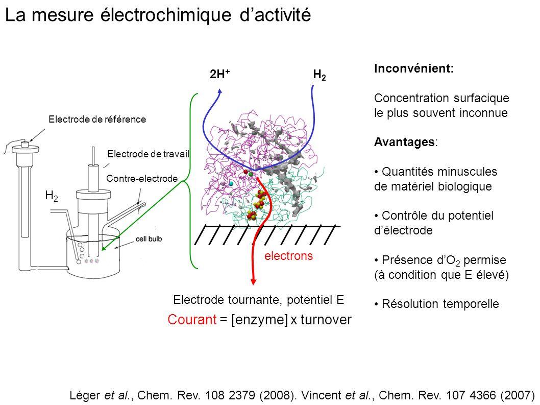 La mesure électrochimique d'activité