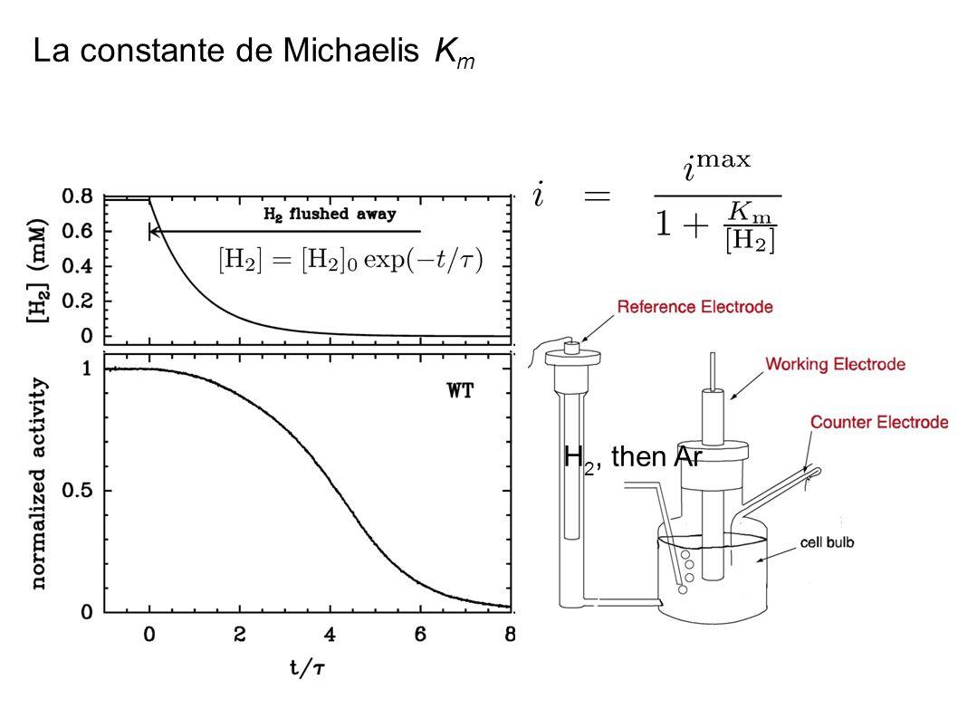 La constante de Michaelis Km