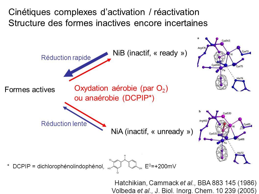 Cinétiques complexes d'activation / réactivation