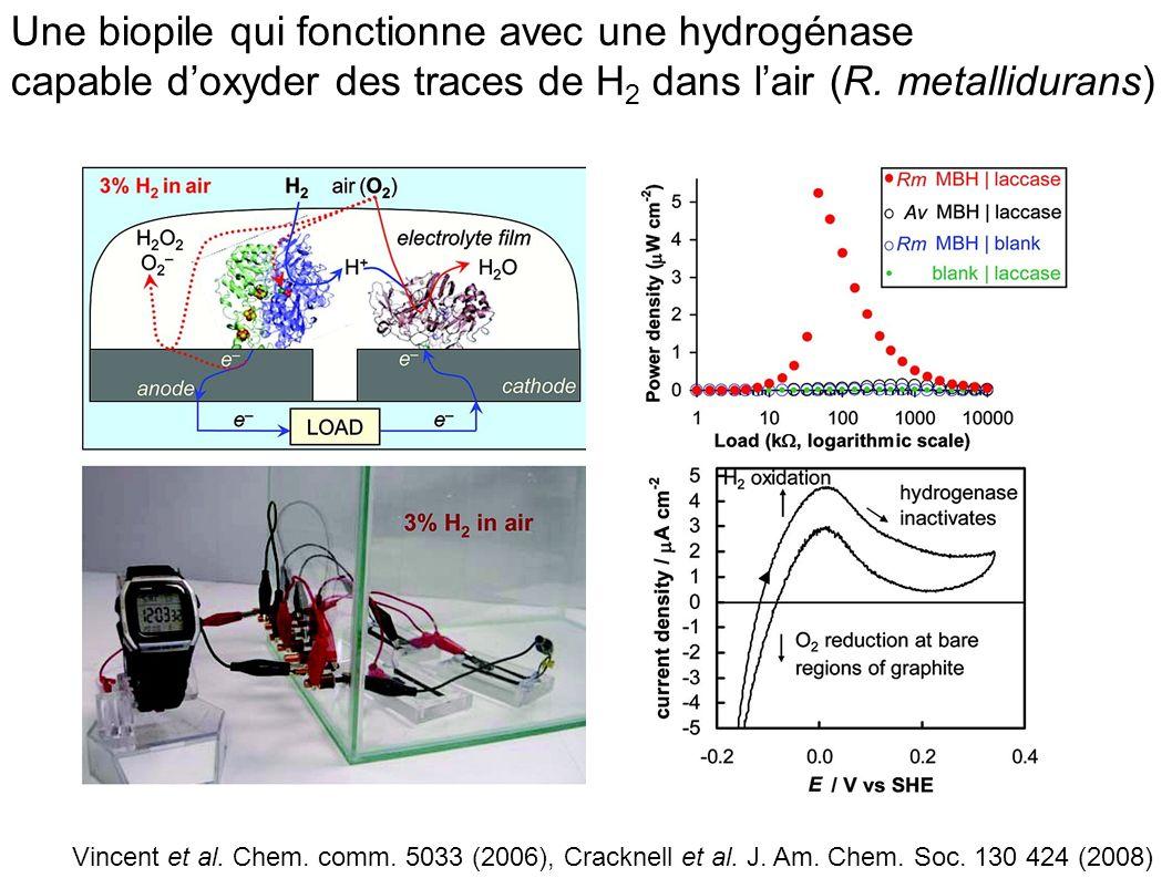 Une biopile qui fonctionne avec une hydrogénase capable d'oxyder des traces de H2 dans l'air (R. metallidurans)