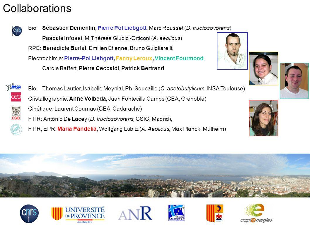 Collaborations Bio: Sébastien Dementin, Pierre Pol Liebgott, Marc Rousset (D. fructosovorans)