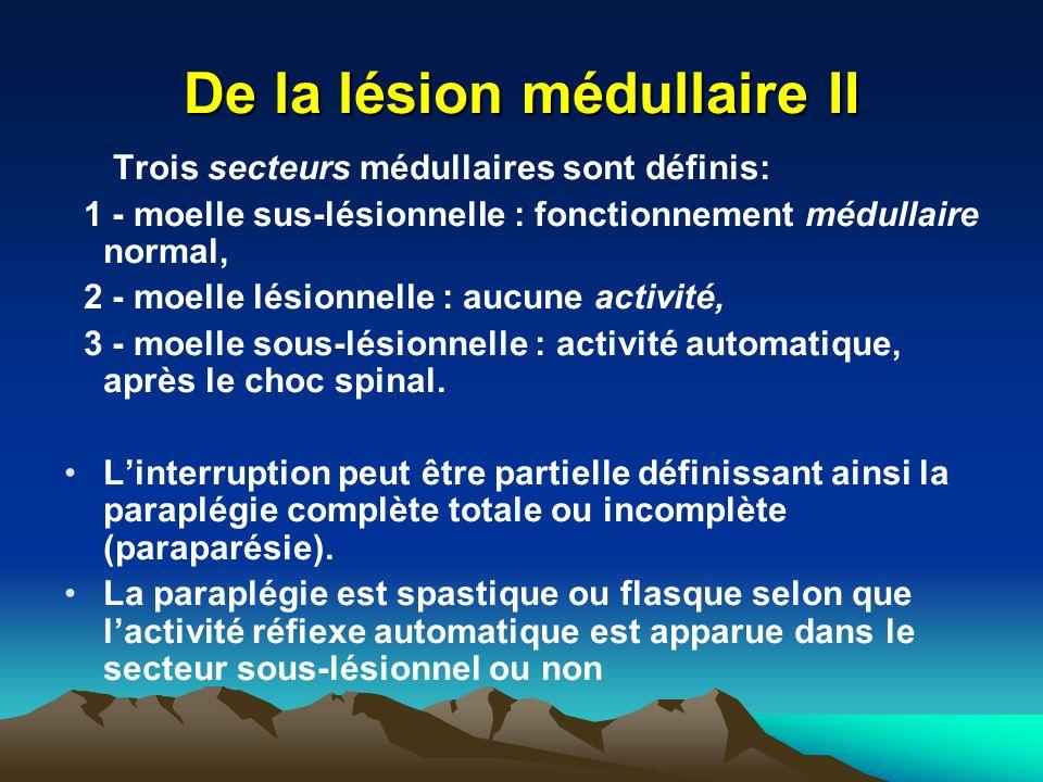 De la lésion médullaire II