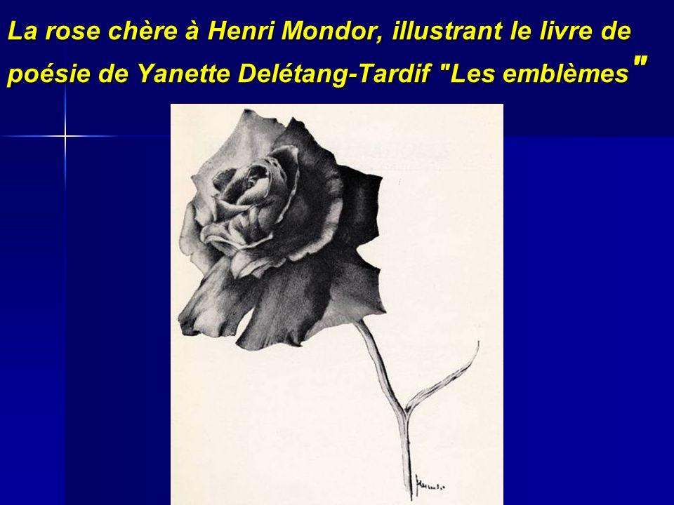 La rose chère à Henri Mondor, illustrant le livre de poésie de Yanette Delétang-Tardif Les emblèmes