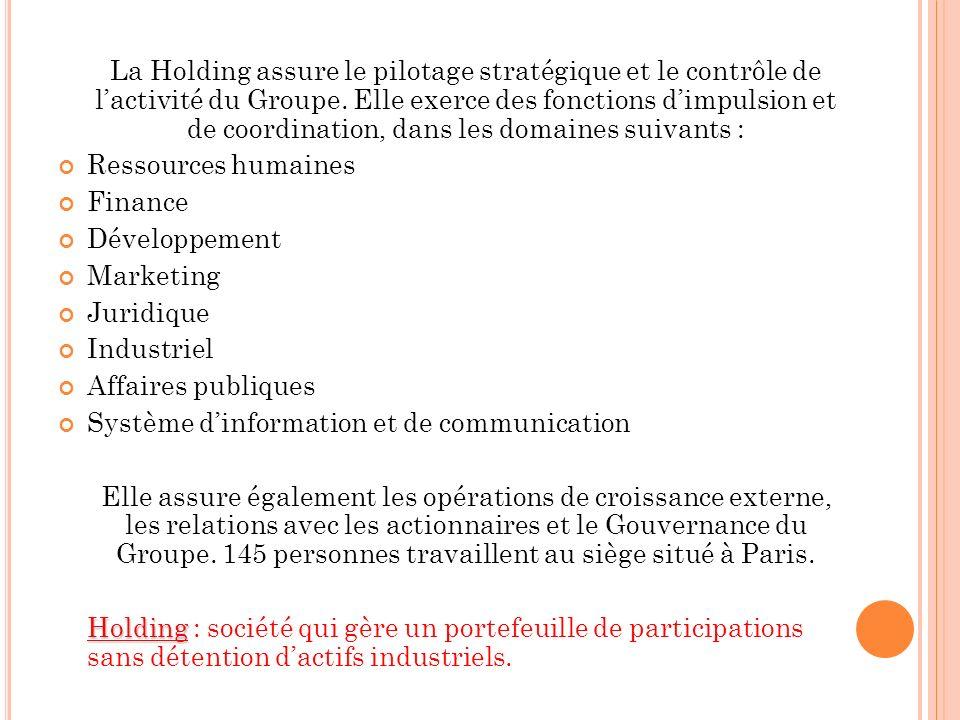 La Holding assure le pilotage stratégique et le contrôle de l'activité du Groupe. Elle exerce des fonctions d'impulsion et de coordination, dans les domaines suivants :