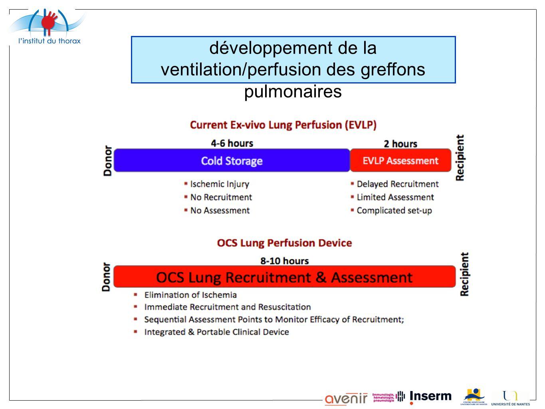 développement de la ventilation/perfusion des greffons pulmonaires