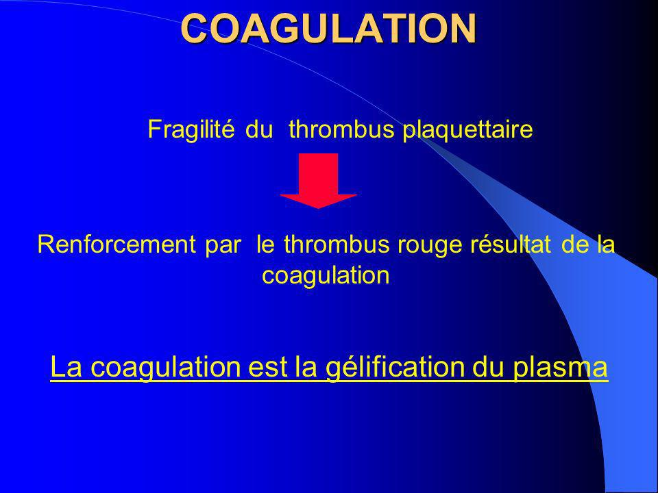 COAGULATION La coagulation est la gélification du plasma