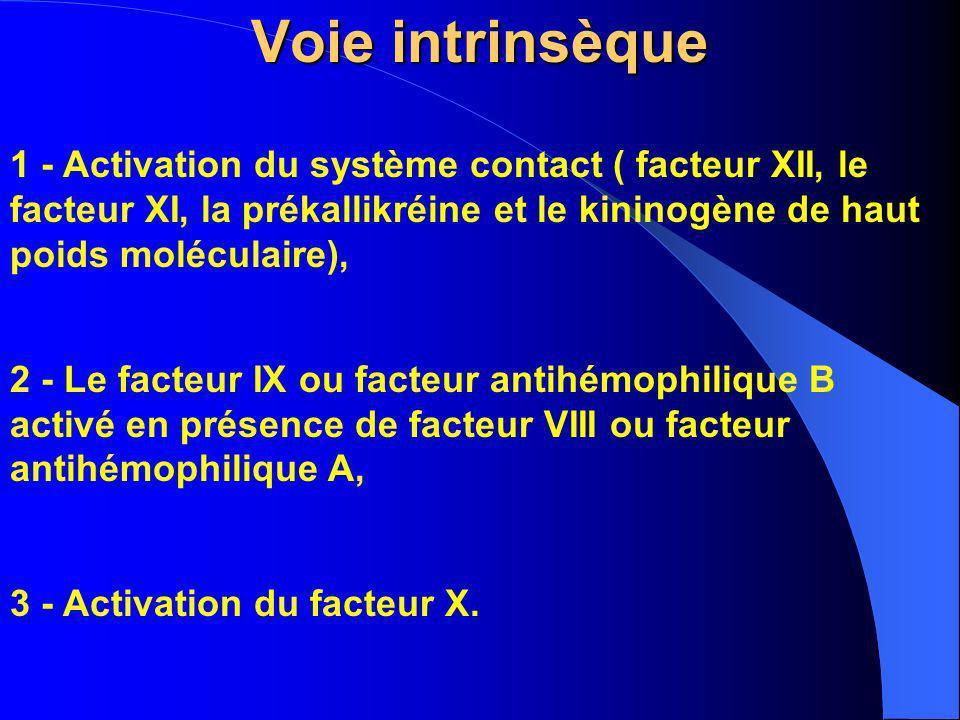 Voie intrinsèque 1 - Activation du système contact ( facteur XII, le facteur XI, la prékallikréine et le kininogène de haut poids moléculaire),