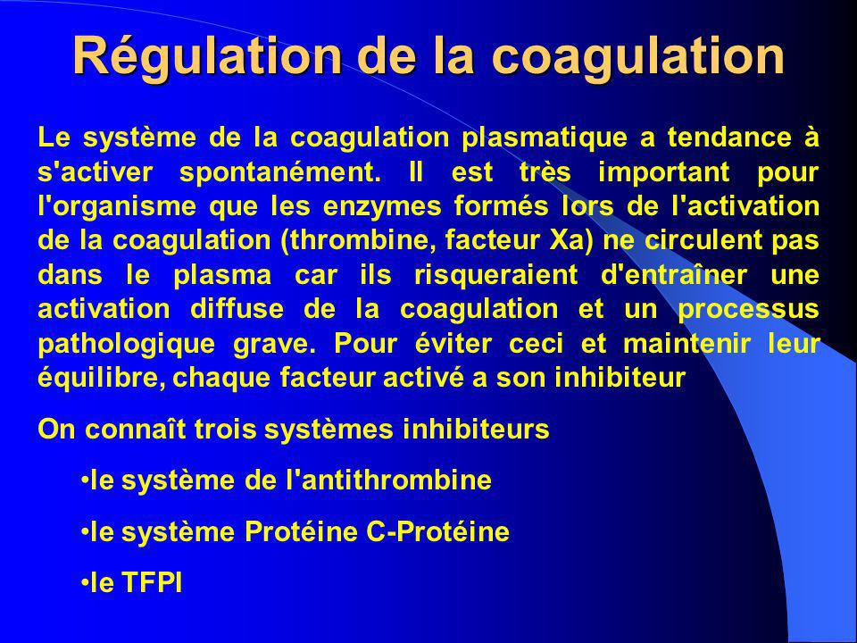 Régulation de la coagulation