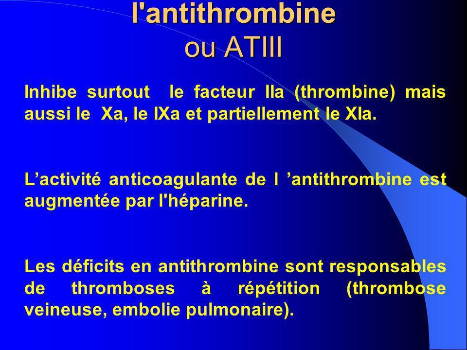 l antithrombine ou ATIII