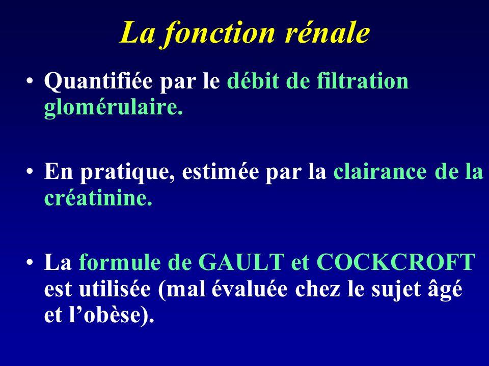 La fonction rénale Quantifiée par le débit de filtration glomérulaire.