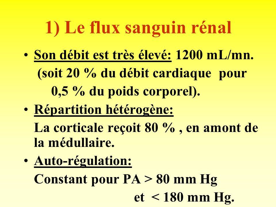 1) Le flux sanguin rénal Son débit est très élevé: 1200 mL/mn.