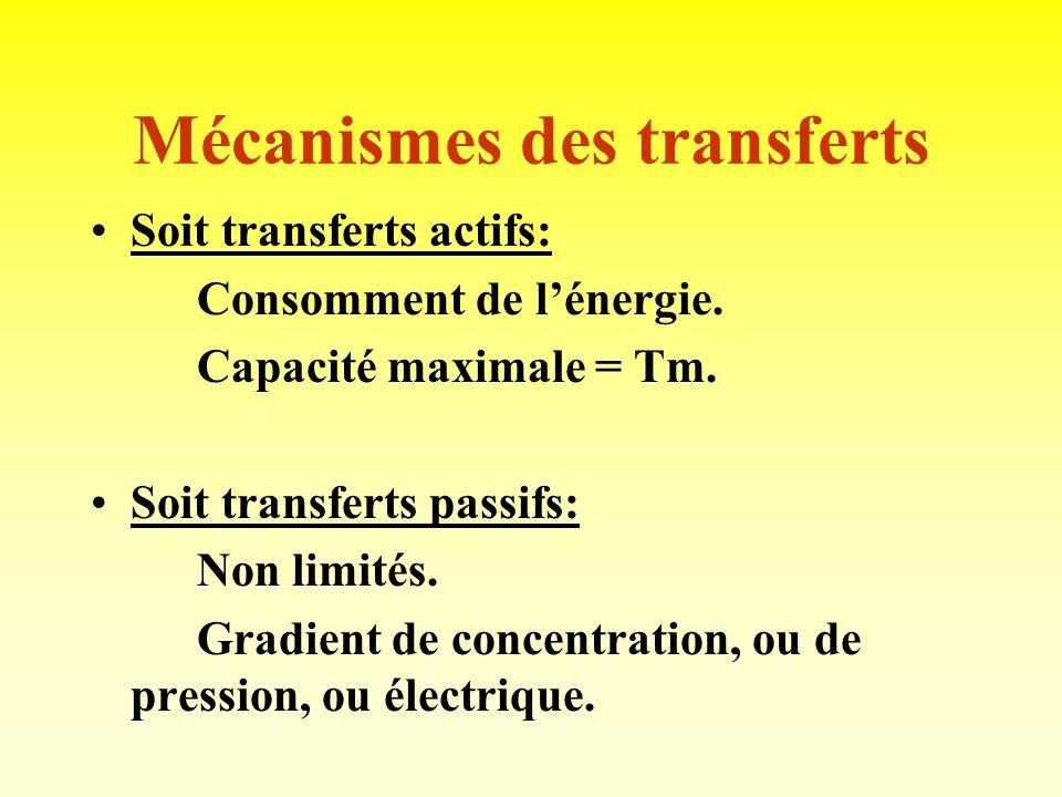 Mécanismes des transferts